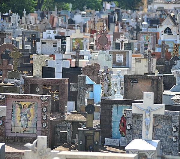 Prefeitura diz que manutenção das sepulturas é responsabilidade das famílias - Luiz Setti