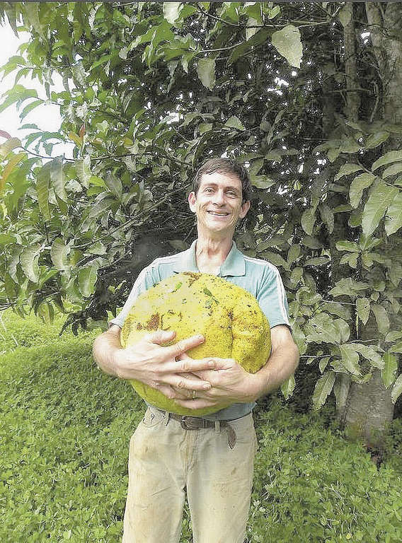 Produtor faz fama com plantas e frutas ex ticas 13 03 15 for Plantas exoticas online