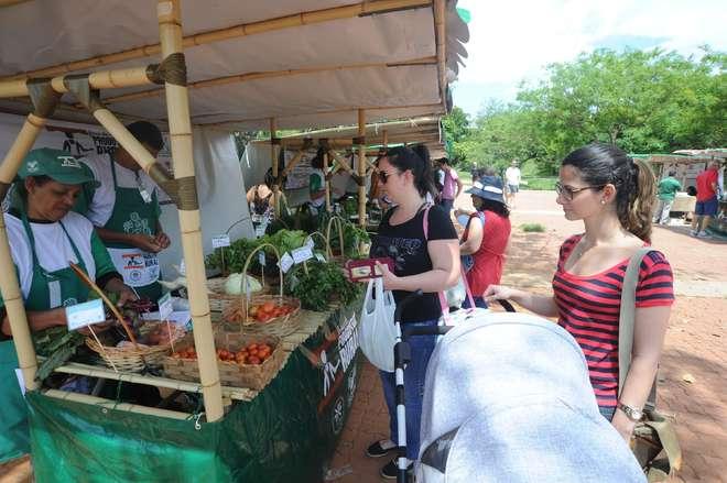 São 21 produtores familiares que compõem a feira orgânica com 11 estandes - FÁBIO ROGÉRIO