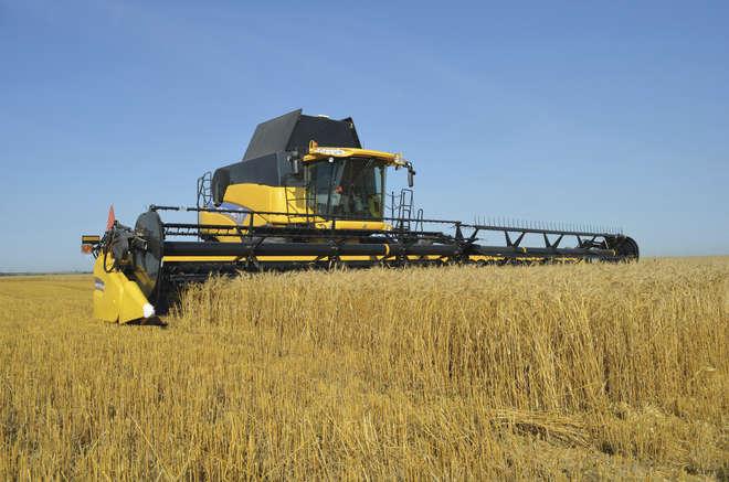 Resultado de imagem para Em dez anos, Brasil deve ultrapassar os EUA na produção de soja