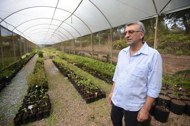 Vanderlei da Silva, gerente do SOS, diz que já chegaram a ser produzidas 10 mil mudas no local - ERICK PINHEIRO