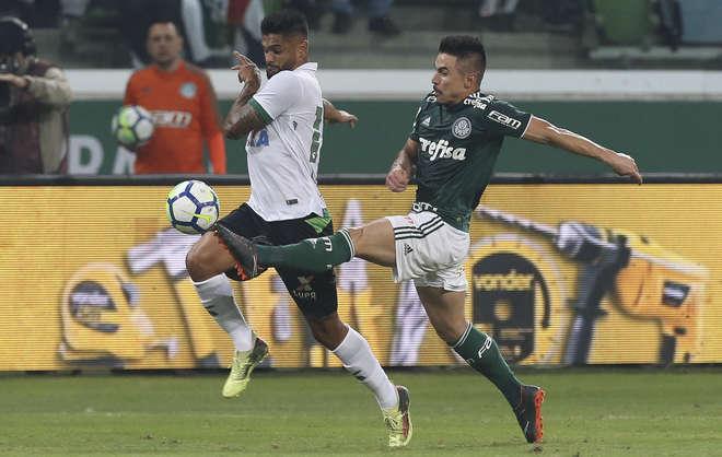 Palmeiras empata com o América-MG e avança na Copa do Brasil - 24 05 ... ea032b17562e2