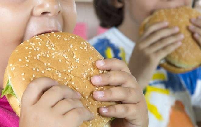 Alimentação inadequada contribui para o excesso de peso - DIVULGAÇÃO