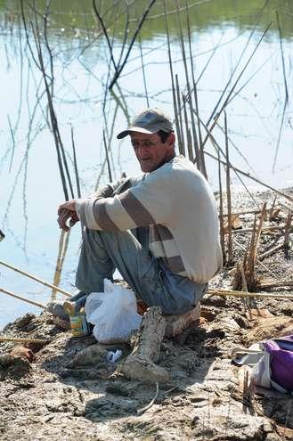 Francisco: mortandade de peixes - EMÍDIO MARQUES