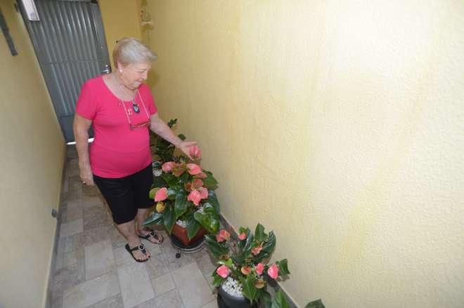 Helena plantou seus antúrios e mil cores em terra adubada - FÁBIO ROGÉRIO